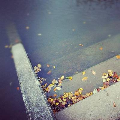 Surface Photograph - Stairs With Autumn Foliage Leading Into Water by Matthias Hauser