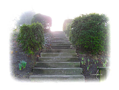 Stairway To A New Beginning Art Print by Brian Wallace