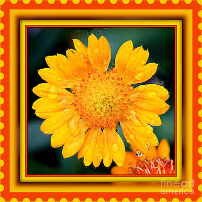 Stamp Of Happiness Print by Carol Groenen