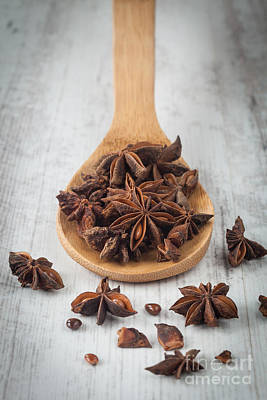 Aniseed Photograph - Star Anise by Sabino Parente