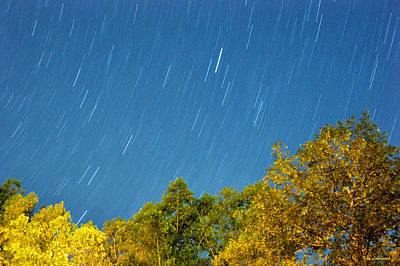 Star Trails On A Blue Sky Art Print by Kay Lovingood