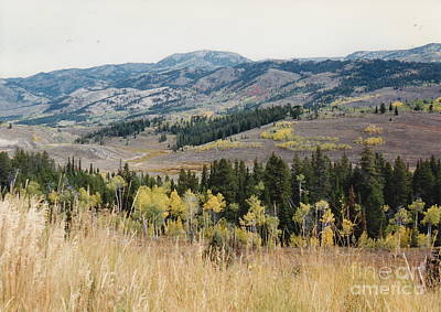 Photograph - Star Valley by Barbara Plattenburg