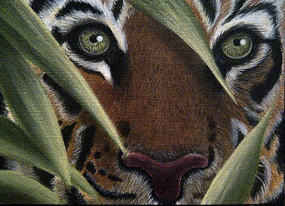 Colored Pencil Painting - Staredown by Ashley Cameron