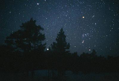 Betelgeuse Photograph - Starfield Including Orion, Sirius & Betelgeuse by Pekka Parviainen