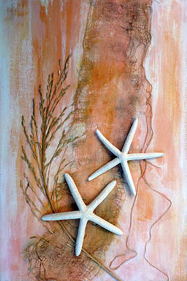 Photograph - Starfish Set - Lefthand Image by Carla Parris
