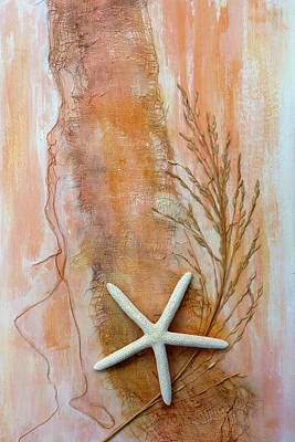 Photograph - Starfish Set - Righthand Image by Carla Parris