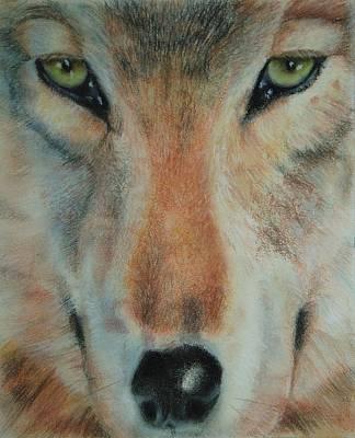 Staring Contest Art Print by Joanna Gates