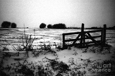 Photograph - Stark Winter by Anjanette Douglas