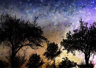 Photograph - Starry Night  by Ellen Heaverlo