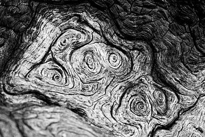 Starry Starry...  Bark II Art Print