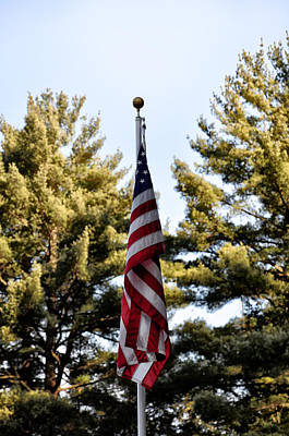 America Photograph - Stars And Stripes Forever by Bill Cannon
