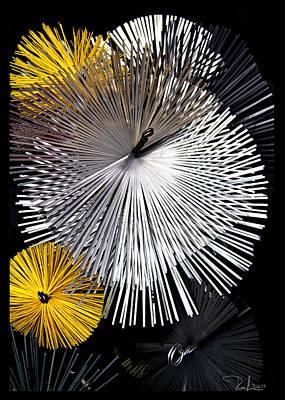 Photograph - Stars Of Smoke  Card by Raffaella Lunelli
