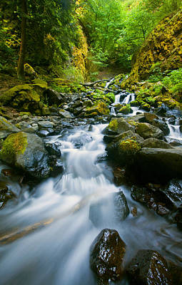 Fall Photograph - Starvation Creek Falls by Mike  Dawson