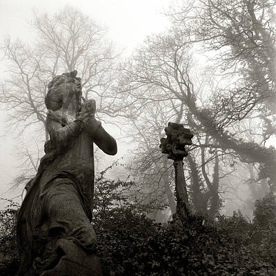 Bare Trees Photograph - Statue by Robert Dalton