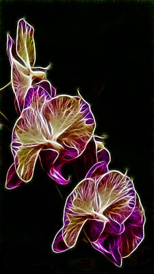 Genus Photograph - Steeped Orchid Jive by Bill Tiepelman