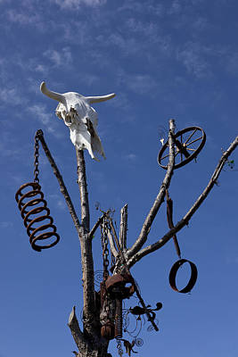 Steer Skull In Tree Print by Garry Gay