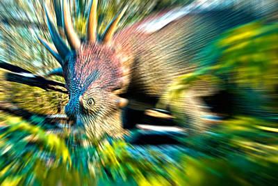 Photograph - Stegorush by Gene Hilton