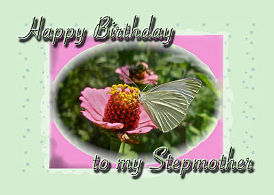 Stepmother Birthday Greeting Card - Butterfly On Flower Art Print