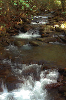 Stepping Stones Of The Mountains Art Print