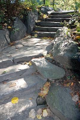Stepping Stones Art Print