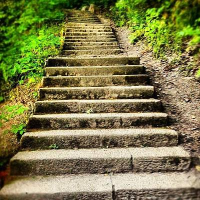 Pathway Photograph - Steps by Claudia Schieve