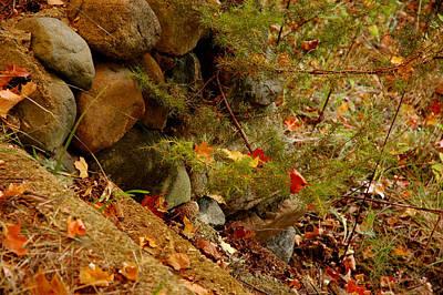 Rock Photograph - Steps Into Fall Beauty by LeeAnn McLaneGoetz McLaneGoetzStudioLLCcom