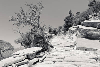 Photograph - Steps On The Hermit's Rest Trail II Bw  by Julie Niemela