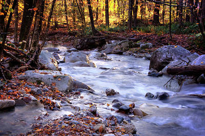 Print featuring the photograph Stickney Brook by Tom Singleton
