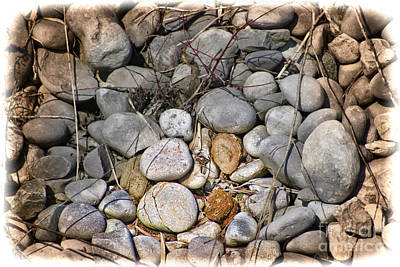 Photograph - Sticks And Stones Can Hurt by Cathy  Beharriell