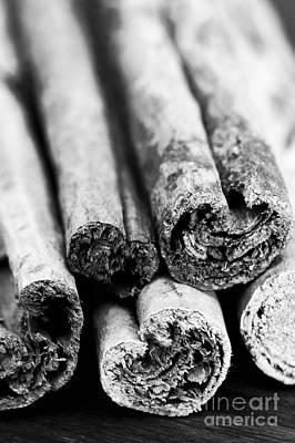 Cassia Photograph - Sticks Of Cinnamon by Anne Gilbert
