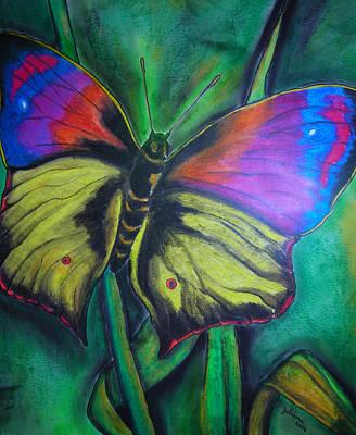 Drawing - Still Butterfly by Juliana Dube