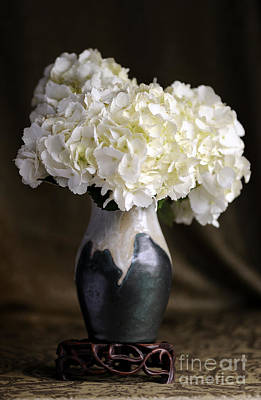 Still Life Vase With Hydrangeas Art Print
