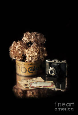 Dried Hydrangeas Photograph - Still Life With Hydrangea And Camera by Jill Battaglia