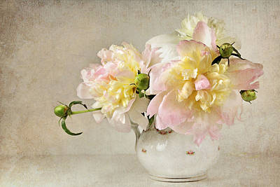 Still Life With Peonies Art Print
