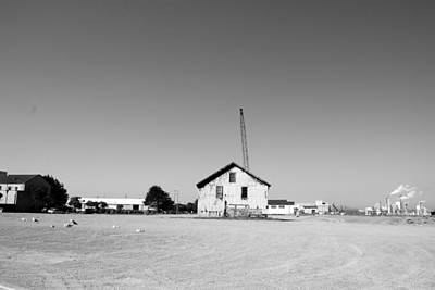 Photograph - Still Standing by Kathleen Grace
