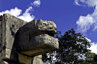 Photograph - Stone Face by Ken Frischkorn