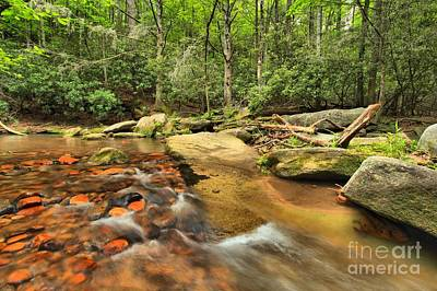 Photograph - Stone Mountain Stream by Adam Jewell