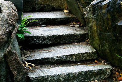 Photograph - Stone  Steps  Close Up by William Meemken