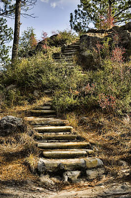 Photograph - Stone Steps by Heather Applegate