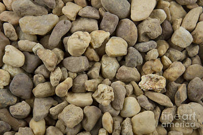 Balance Of Nature Photograph - Stones by Blink Images