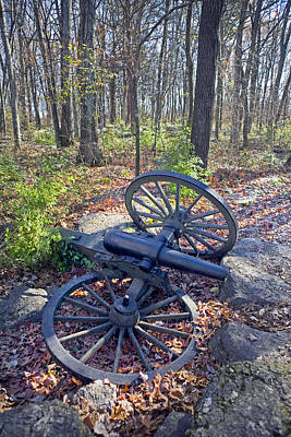 Stones River Battlefield Art Print by Luc Novovitch