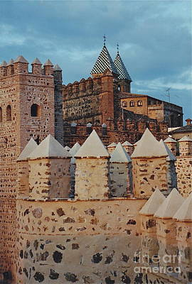 Photograph - Stonework And Spires by Barbara Plattenburg