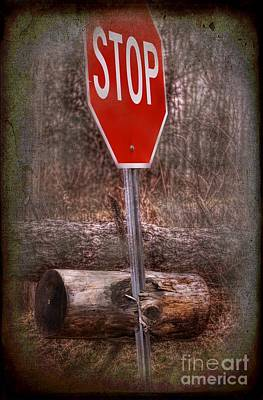Stop Firewood Transport Print by The Stone Age
