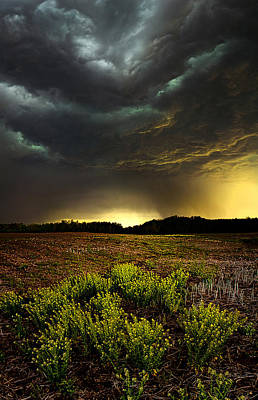Storm Chaser Art Print by Phil Koch