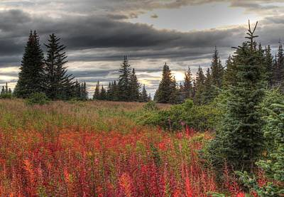 Art Print featuring the photograph Storm Clouds In Fall by Michele Cornelius