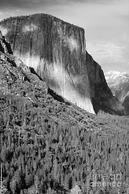 Photograph - Storm Over El Capitan by Sandra Bronstein