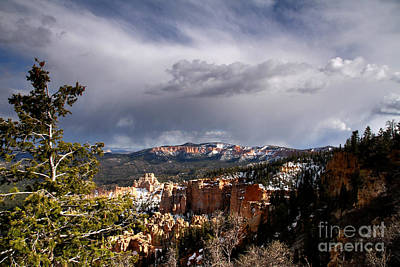 Photograph - Storm Over The South Rim Bryce Canyon by Butch Lombardi