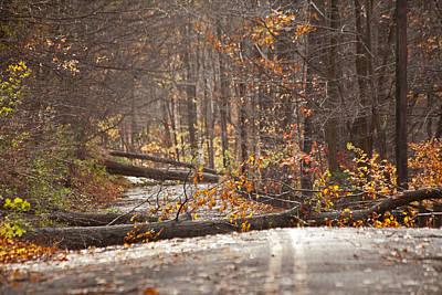 Stormy Autumn Art Print by Karol Livote
