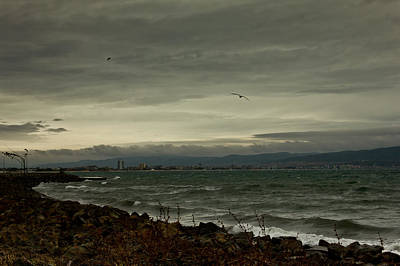 Photograph - Stormy Day by Nadya Ost