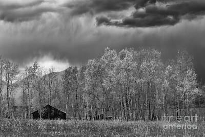 Photograph - Stormy Morning In The Grand Tetons by Sandra Bronstein